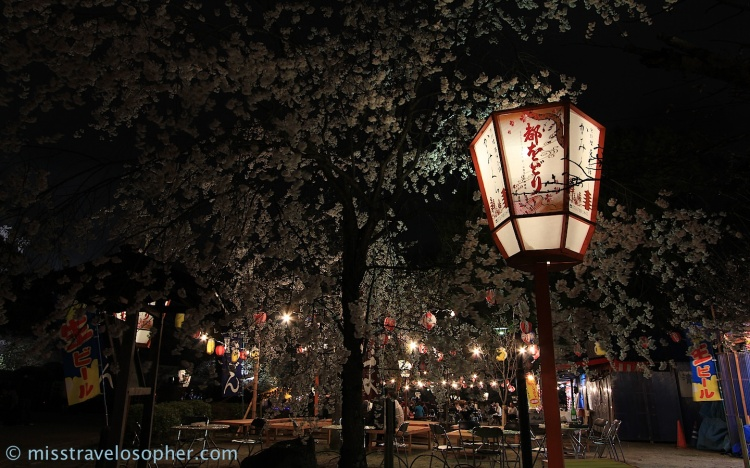 Many areas were set up for hanami parties