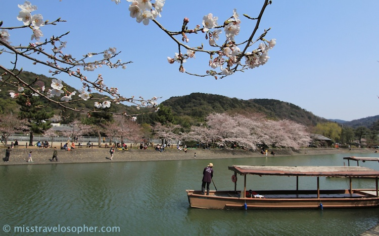 Sakura, boats and a river