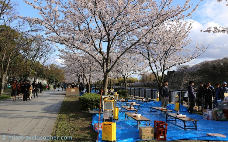 This is the most prepared 'hanami party' I saw! Complete with BBQ on wheels, foldable tables and lights!! Almost looking like a mobile restaurant